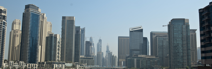 Dubai Country Profile 2014