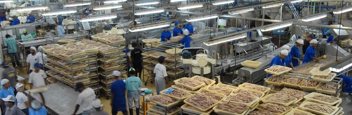 PNG Industry 2012