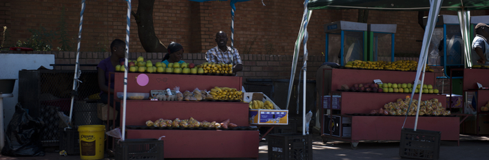South Africa Agriculture 2012