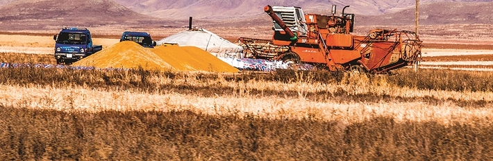 Mongolia Agriculture 2014