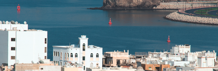 Oman 2019 Country Profile
