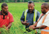 PNG agricultural exports
