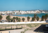 Tunisia: Year in Review 2019