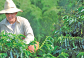 Colombia agro