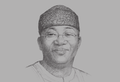 Kayode Fayemi, Minister of Solid Minerals Development