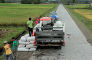 Philippines 2019 Agriculture