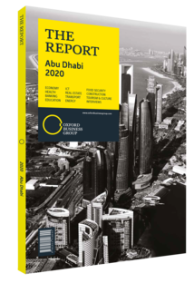 Cover of The Report: Abu Dhabi 2020