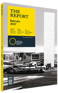 Cover of The Report: Bahrain 2017