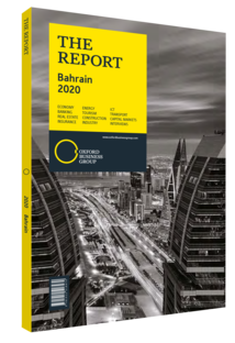 Cover of The Report: Bahrain 2020