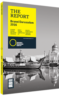 Cover of The Report: Brunei Darussalam 2016