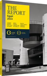 Cover of The Report: Egypt 2014
