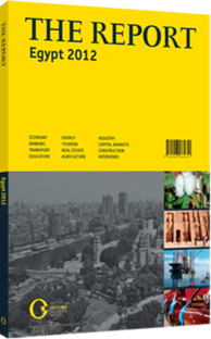 Cover of The Report Egypt 2012