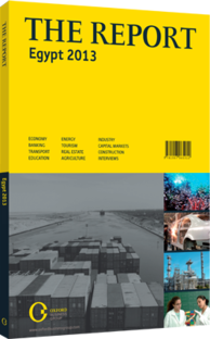 Cover of The Report: Egypt 2013