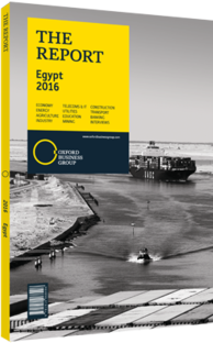 Cover of The Report: Egypt 2016