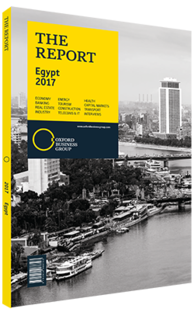 Cover of The Report: Egypt 2017