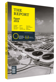 Cover of The Report: Egypt 2019