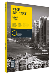 Cover of The Report: Egypt 2020