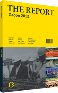 Cover of The Report Gabon 2012