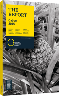 Cover of The Report: Gabon 2015