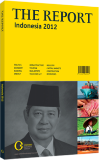 Cover of The Report: Indonesia 2012