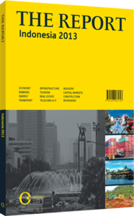 Cover of The Report: Indonesia 2013