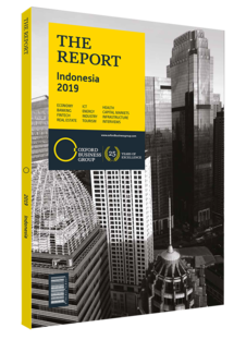 Cover of The Report: Indonesia 2019