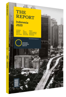 The Report: Indonesia 2020