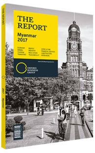 Cover of The Report: Myanmar 2017