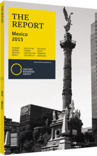 Cover of The Report: Mexico 2015