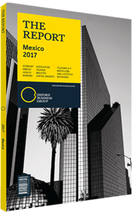 Cover of The Report: Mexico 2017