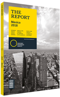 Cover of The Report: Mexico 2018