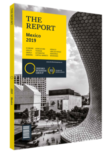 Cover of The Report: Mexico 2019