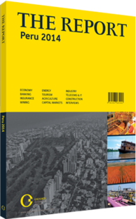 Cover of The Report: Peru 2014