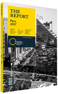 Cover of The Report: Peru 2017