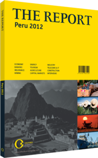 Cover of The Report: Peru 2012
