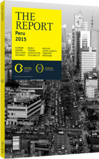 Cover of The Report: Peru 2015