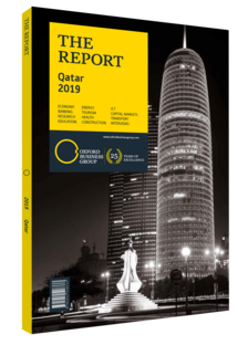 Cover of The Report: Qatar 2019