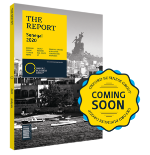 Cover of The Report: Senegal 2020