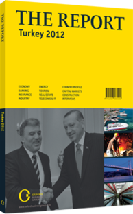 Cover of The Report:Turkey 2012