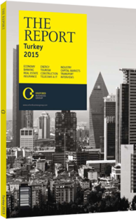 The Report: Turkey 2015