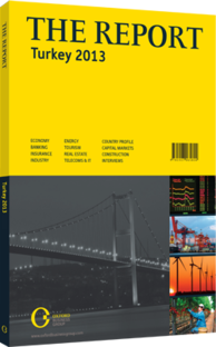 Cover of The Report: Turkey 2013